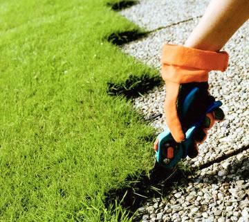 Jardinier paysagiste beaufort en val e de jean jacques for Refection pelouse prix