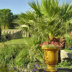 Plantation et entretien jardin 49 angers et maz maine for Entretien jardin 49